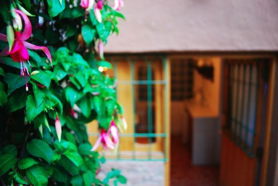 Nawin Cusco Eco apartamentos: Qente