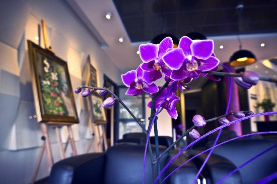 Hotel Szafran : Lobby