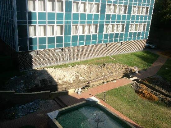 Albion Hotel: seul endroit de relaxation le jardin !!!