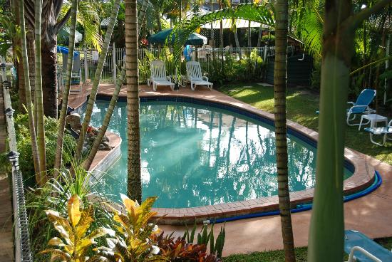 Silvester Palms Holiday Apartments: Great pool