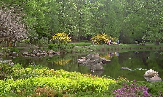 Japanese Garden - Szczytnicki Park: Ogród Japoński 2