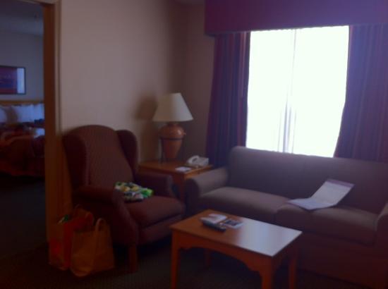 Homewood Suites by Hilton Phoenix / Scottsdale : Wohnzimmer