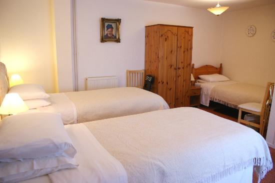 Dolronwy Bed & Breakfast: Family en suite room with 3 single beds