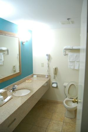 Days Inn College Park/Atlanta /Airport South: Bath1