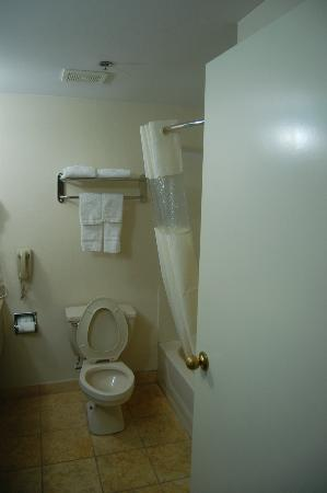 Days Inn College Park/Atlanta /Airport South: Bath2