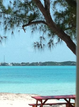 Coral Gardens: un paradiso ma da caccia al tesoro