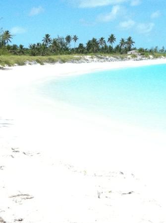 Coral Gardens: le spiaggie sono poco segnalate ma se le trovi..