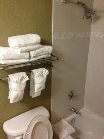 Crowne Plaza Monroe South Brunswick: ok