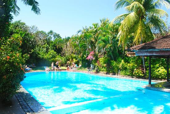 Three Brothers Bungalows: pool area
