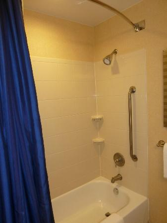 Courtyard Amarillo West/Medical Center: Shower