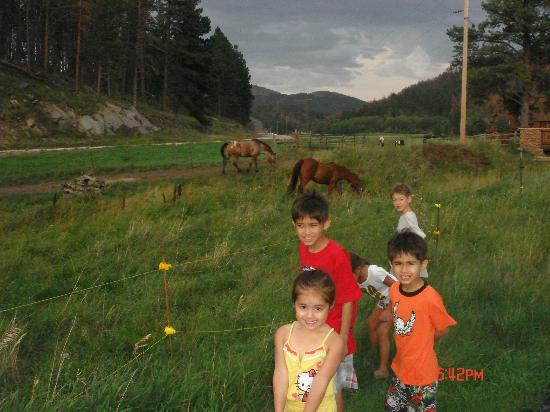 High Country Guest Ranch: Kids watching the horses outside our cabin