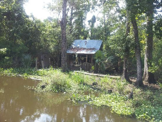 Abandoned Cabin Picture Of Cajun Pride Swamp Tours Laplace