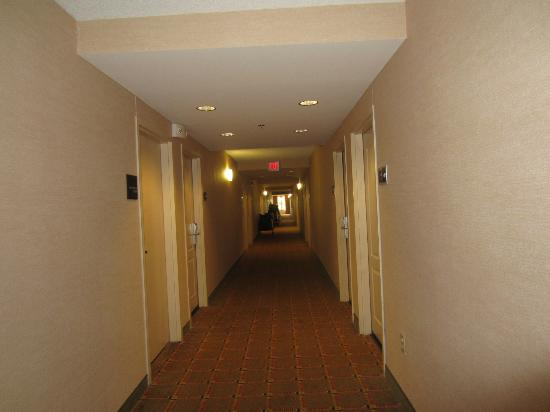 Hampton Inn & Suites Plymouth: Hallway