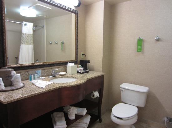 Hampton Inn & Suites Plymouth : Bathroom