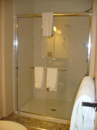 Executive Inn At Whistler Village: bathroom