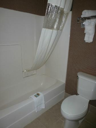 Travelodge Suites Savannah Pooler: Bathroom