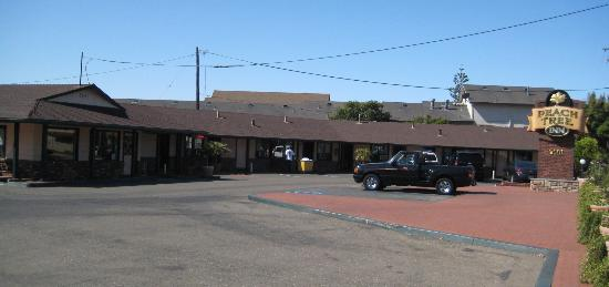 Peach Tree Inn: Motel Street View