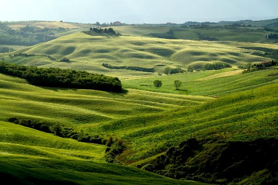 Agriturismo Il Molinello: Exploring the nearby Val D'Orcia