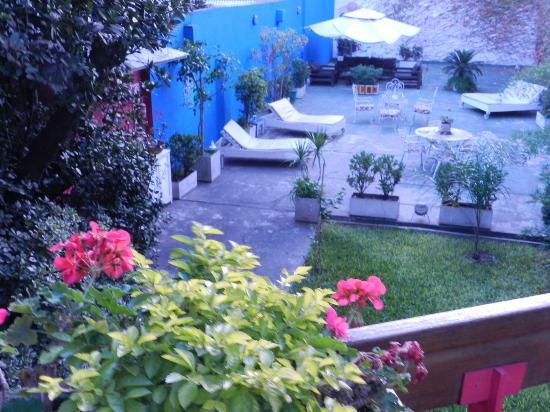 Livian Guesthouse: Garden