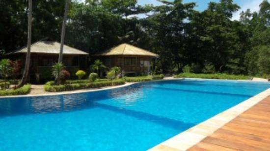 Two Fish Divers Bunaken: Large swimming pool and pool terrace