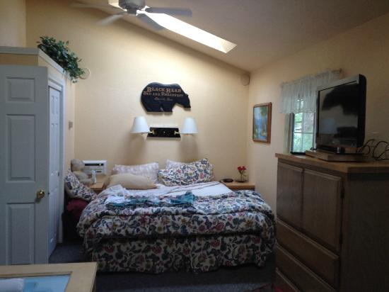 Pine Knot Guest Ranch: King bed with skylight above, flat screen TV - cabin 15