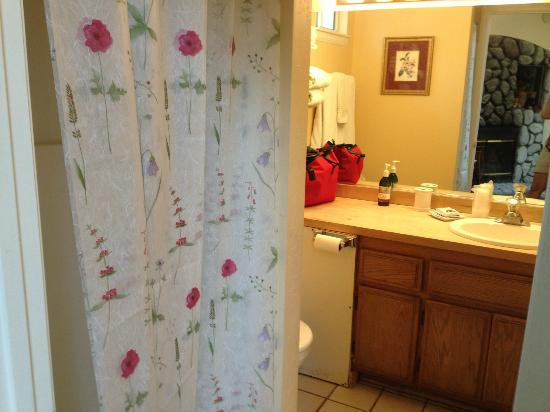 Pine Knot Guest Ranch: Shower in bathroom