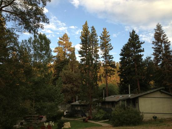 Pine Knot Guest Ranch: Blue skies after the thunderstorms-view from Cabin 15