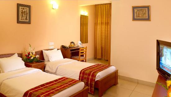 Mysore Mayflower Hotel: Twin Room