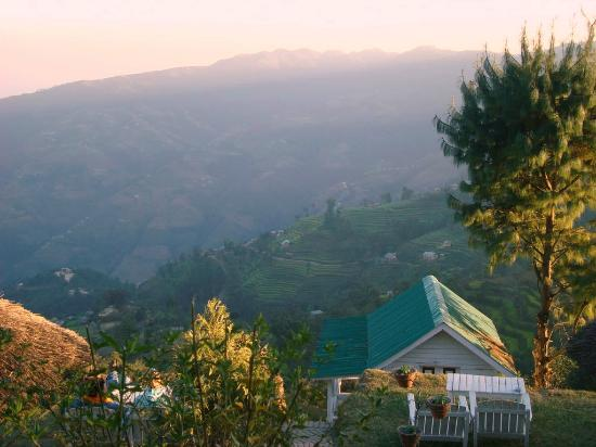 Sherpa Alpine Cottage: sunset over the cottage
