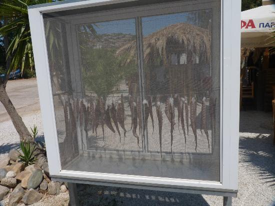 Prefeitura de Chania, Grécia: Polipi a seccare, tipico piatto greco, a Marathi beach