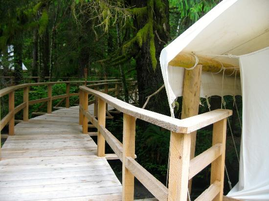 Clayoquot Wilderness Resort: Leaving our tent...