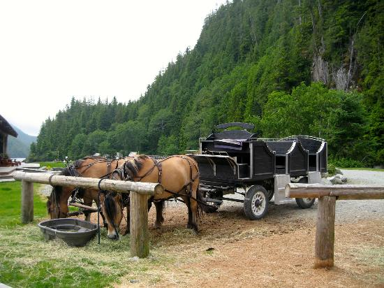Clayoquot Wilderness Resort: Our ride :o)