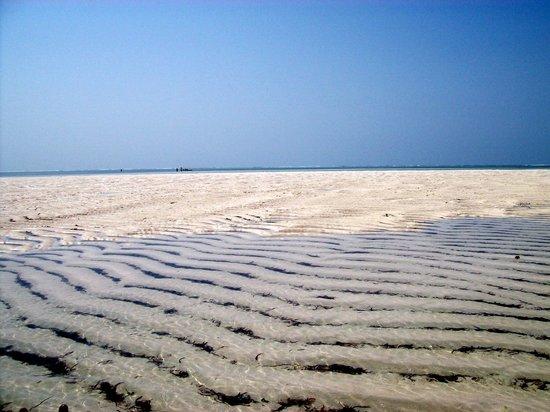 Safari con Giovanni Masai: L'acqua cristallina di Sardegna 2