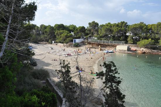 Fiesta Hotel Cala Gracio: beach close to cala gracio hotel