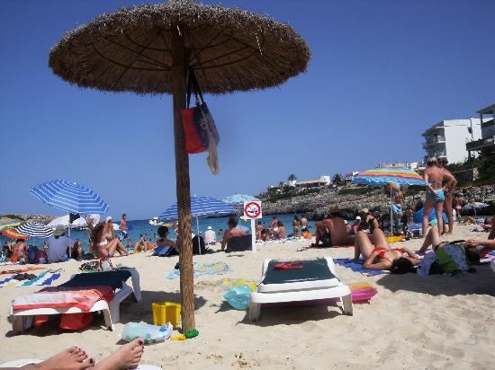 OLA Aparthotel Cecilia: BEACH