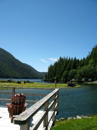 Clayoquot Wilderness Resort: Beautiful views