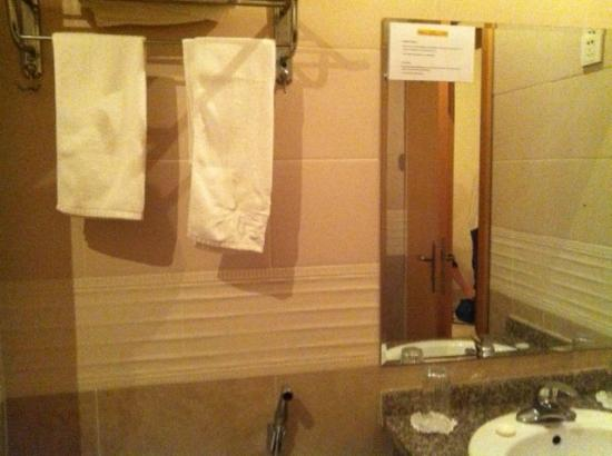 Hotel Palacio Regina : Bathroom