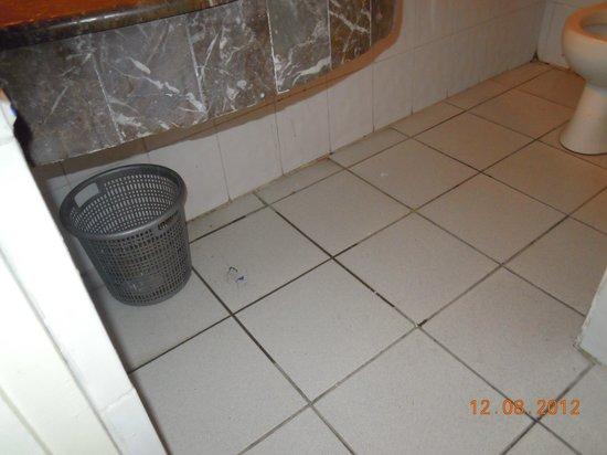 Majestic Hotel: dirty floor bathroom