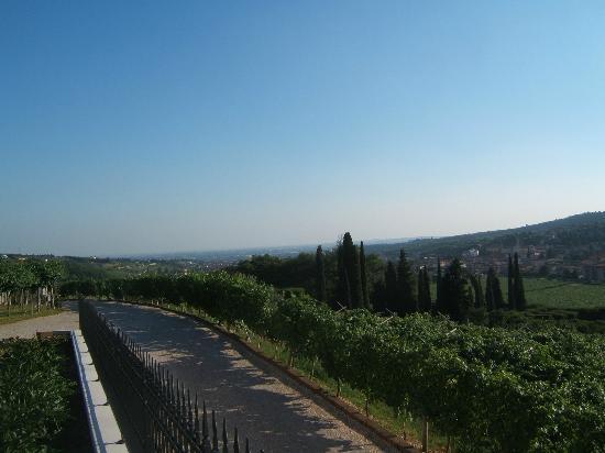 Fratelli Vogadori : Panorama dalla cantina Valpolicella