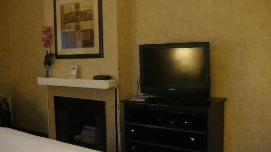 Rosedale Inn Executive Suite: Our room: cozy, clean and large