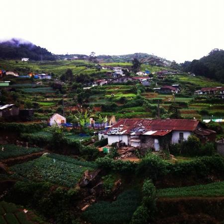 Hill Breeze Villa: vue