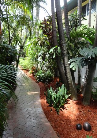 Hotel Lush Royale: Tropical Path to the Media Room