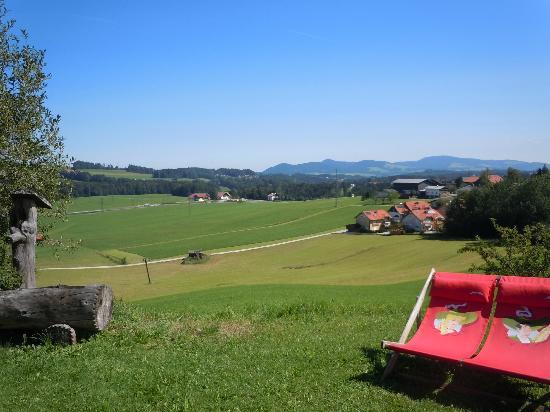 Gasthof Am Riedl: Countryside