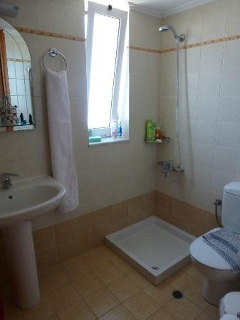 Joanna's Place: shower room/toilet