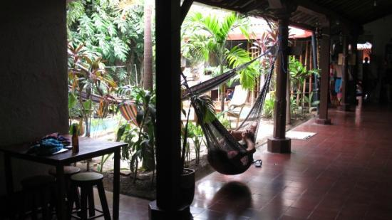 Bigfoot Hostel: Around the pool