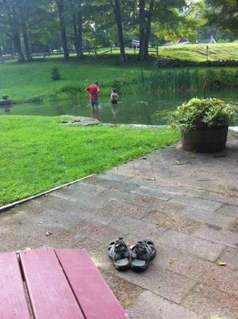 جرافتون إن: the swimming pond/pool 