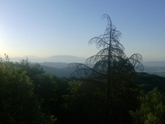 Hotel Colle della Trinita: Vue sur Pérouse(Perugia)