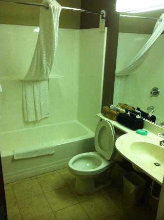 Microtel Inn & Suites by Wyndham Bethel: Bathroom