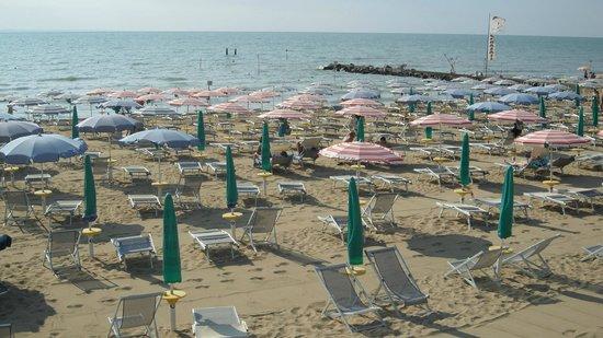 Hotel Rosapineta: la spiaggia