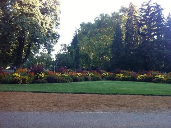 Vidam Park
